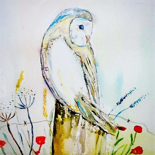 Barn Owl (Greeting card)