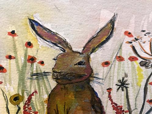 Inquisitive hare (original)