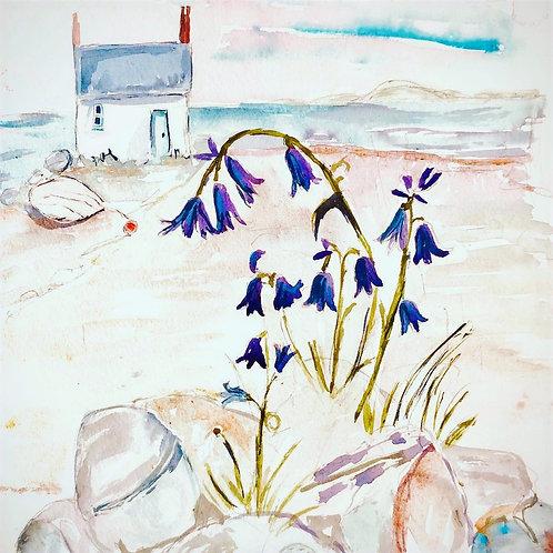 Bluebell Cottage ( signed print)