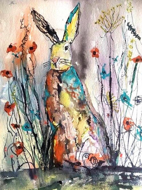 Wildflower Irish Hare