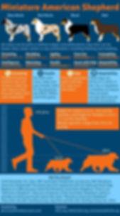 mas_infographic-451x809.jpg