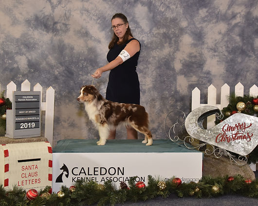 Caledon show two points toward GCH.jpg
