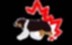 logo mascan.png
