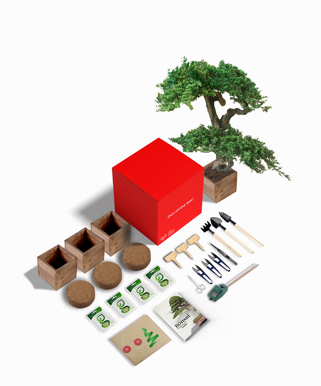 Kit completo bonsai 3.png