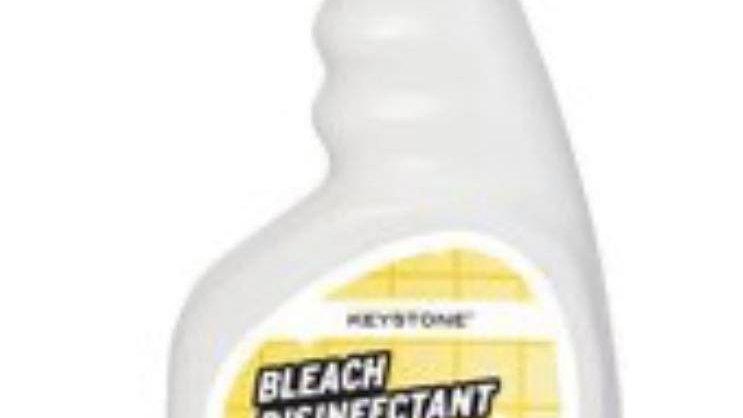 Bleach Disinfectant Spray 1 32oz Bottle Kills Corona Virus also deodorizes clean
