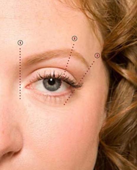 התחלת הגבה צריכה להיות בקו ישר מהאף (מסוף הנחיר), האמצע צריך לעבור בקו ישר דרך האישון כמסתכלים ישר, וסוף הגבה צריכה להיות בקו אלכסון מהאף לסוף העין.