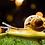 """גילמור ביוטי - VENZEN -  סרום חומצה היאלרונית ותמצית ריר חלזונות 100 מ""""ג"""