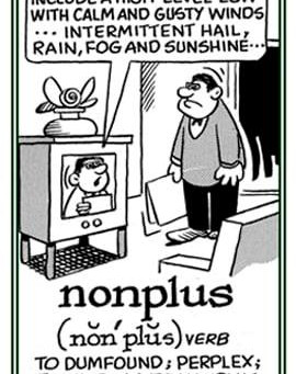 Wednesday Word: Nonplussed