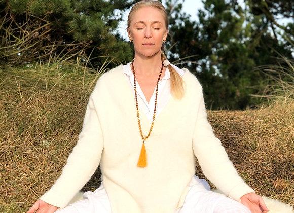 21 Dages Forårs Meditation Online Man-fre kl.6:30-7:05