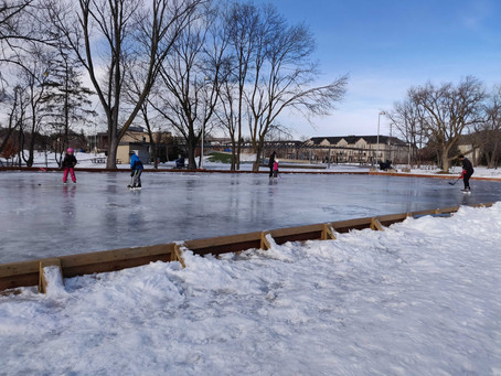 Willowdale Natural Ice Rink Status