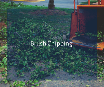 Brush Chipping Services