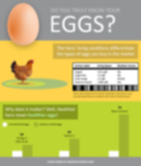 pasture-raised-eggs-hen-infographic.png