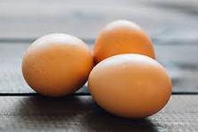 high res egg.jpg