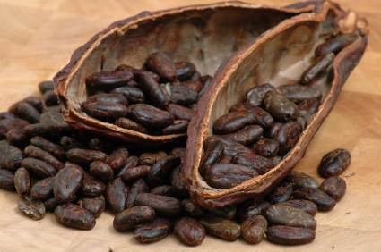 The power of Cacao
