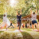 energy.garden.jpg