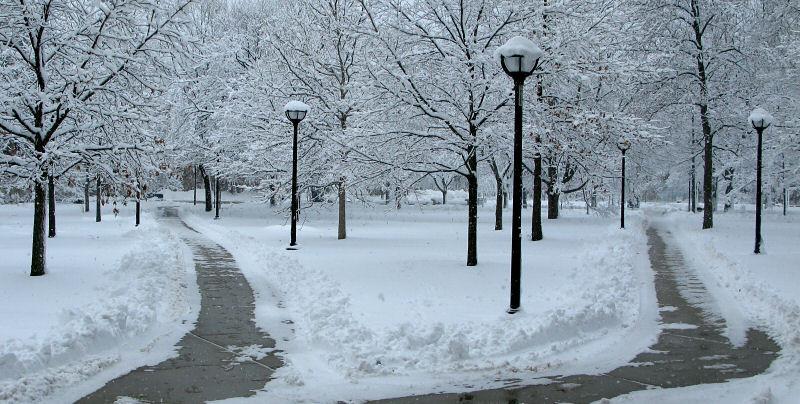 University of Michigan's Diag in the Winter