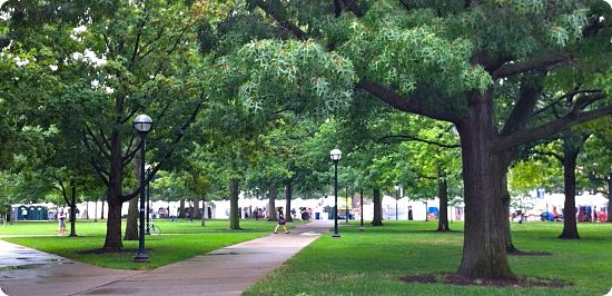 The University of Michigan's diag in the summer months