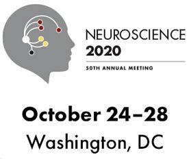 Neuroscience 2020 50th Annual Meeting Icon