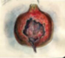 Rotten Pomegranate