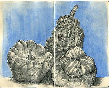 Three Squashes, Pumpkins