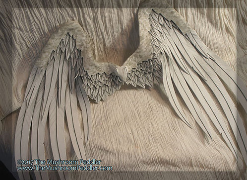 "Angel Doll Wings 20""- Handmade/painted - White"