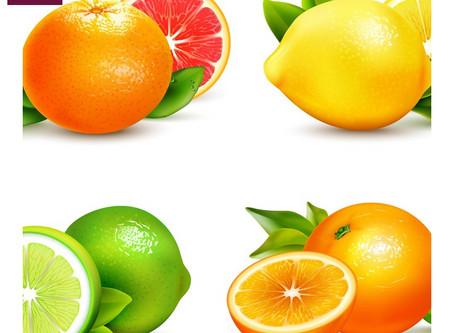 Limões Frescos Fermentados//Limoni Freschi Fermentati