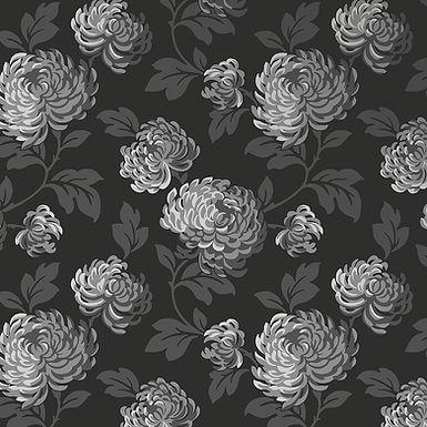 Bloom 13889