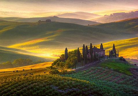 978 Toscana