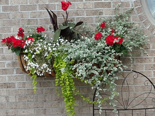 wrought iron window box hayrack