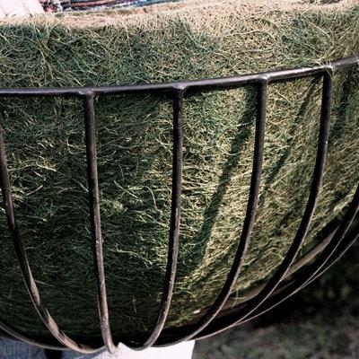 heavy-duty iron wall planter