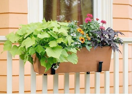 affordable copper flower boxes