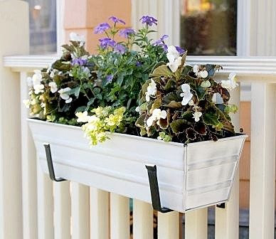 white metal flower box