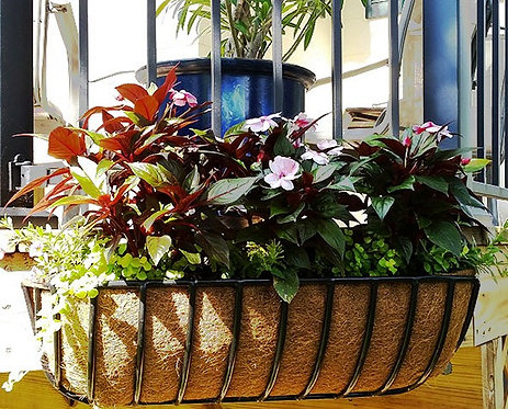 coco liners for window box hayracks