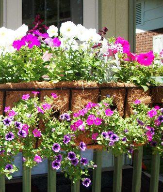 wrought iron window box planters