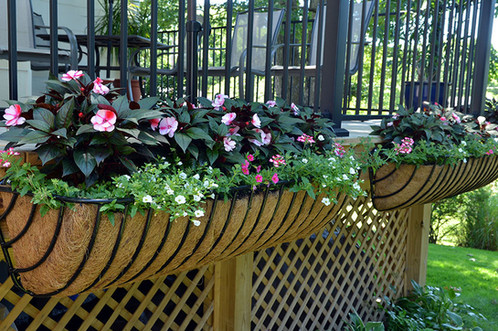 Large Wrought Iron Window Box With Coco Liner 55 In