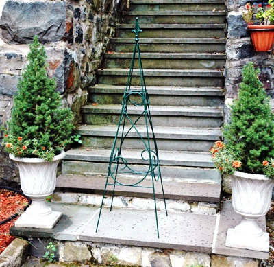 climbing plant support for large containers