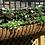 large iron wall planters