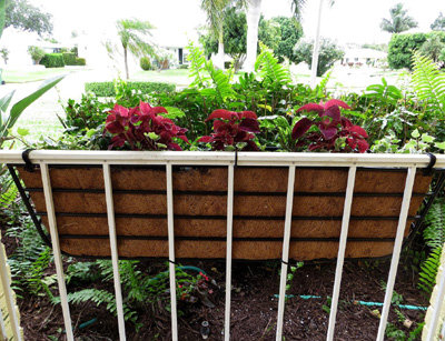 hang planters on iron deck rails