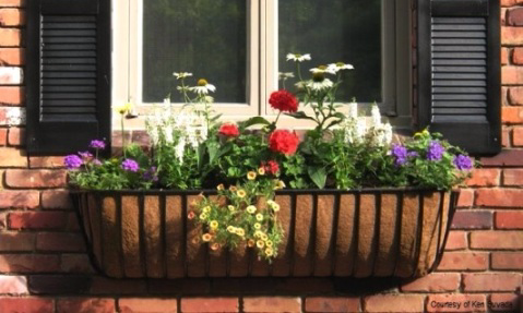 wrought iron window box with coco liner