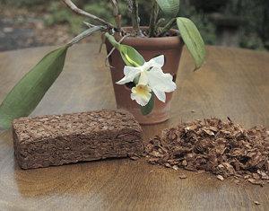 best orchid medium