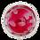 Thumbnail: Vegan Gummy Dracula Teeth Gift Jar