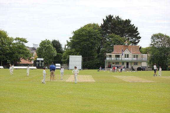 Beechwood Cricket Week