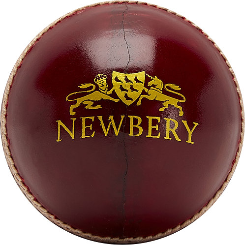 Newbery SPS Grade 1 Cricket Ball