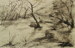 Marsh-Lands