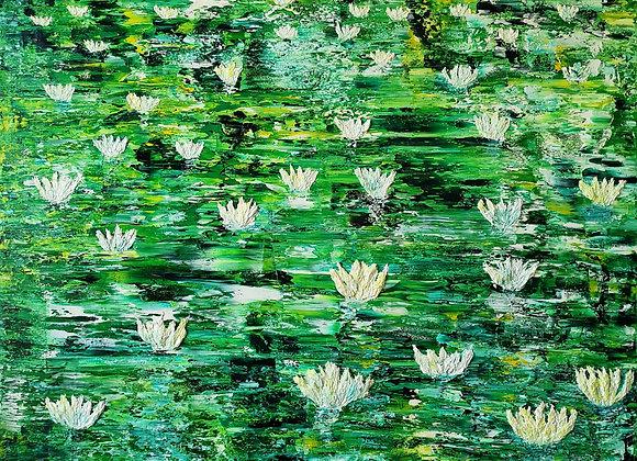 Hera's Lilies