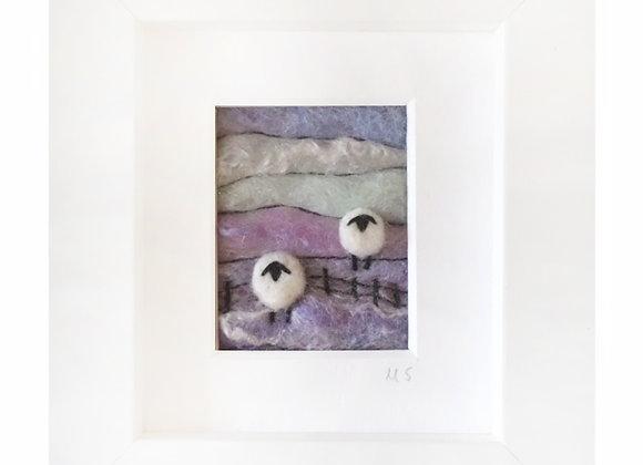 Tilly Tea Dance - Sheep 06