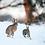 Thumbnail: Two Hares