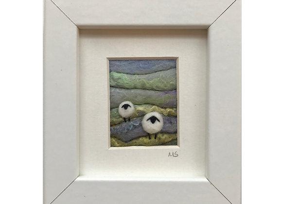 Tilly Tea Dance - Sheep 15