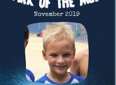November 2019 - Shark of the Month