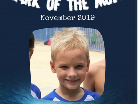 November 2019 - Shark of the Month